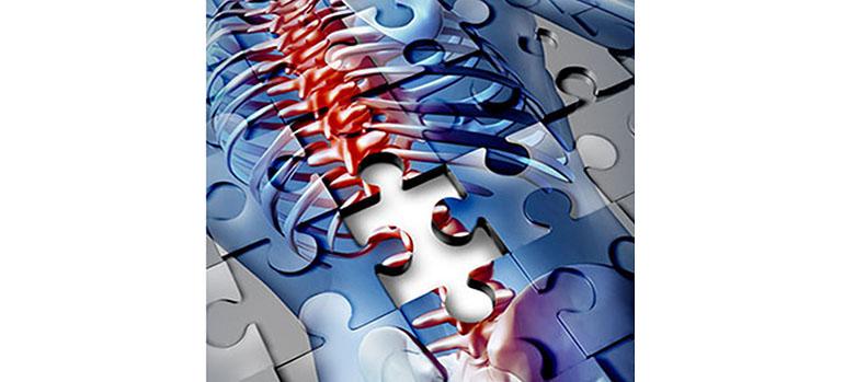 Bild copyright lightspring, 2013 Mit Genehmigung von Shutterstock.com