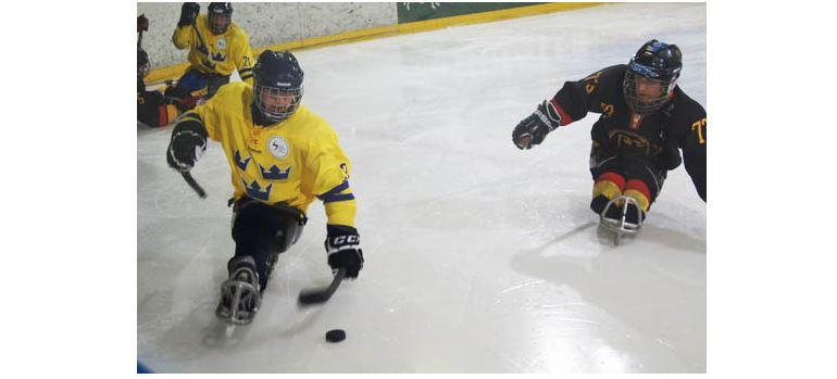 Sledge_Eishockey neu