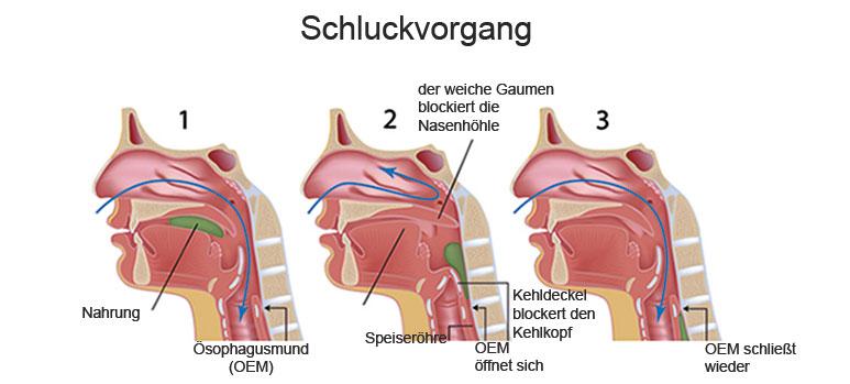 Bild 119184289 copyright Alila-Medical-Images, 2013 Mit Genehmigung von Shutterstock.com