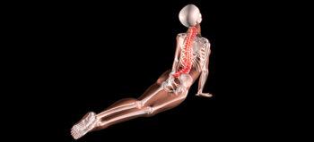 Yoga bei Querschnittlähmung