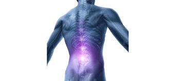 Verbindungselement zur Regeneration des Rückenmarks