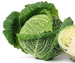 Bild 119624410 copyright Anna Sedneva, 2013 Mit Genehmigung von Shutterstock.com