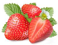 Erdbeeren für Frozen Daiquiris
