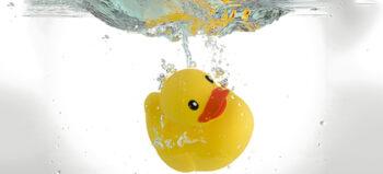Die Triathlon Chroniken I – Wie eine Ente im Wasser