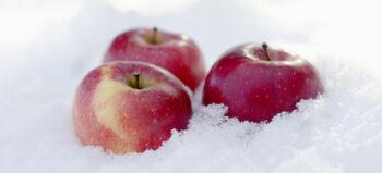 Bei Querschnittlähmung: Heiße Tipps für kalte Tage