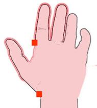 Abb. 1: Akupressurpunkte bei Durchfall