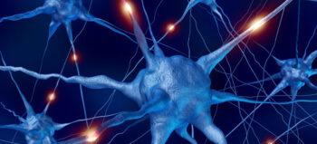 Erste Erfolge bei Stammzellentherapie