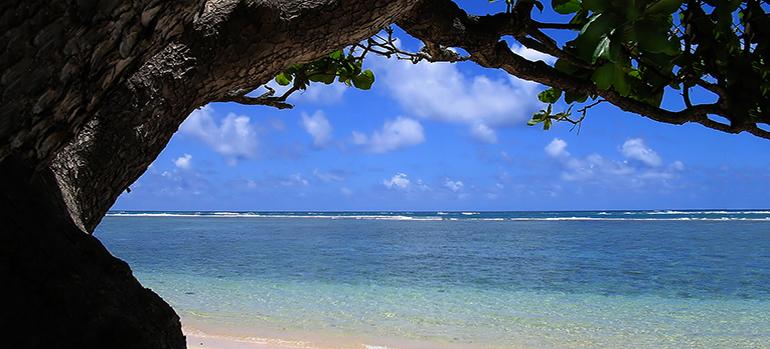 Bild 348780 Copyright christine-fron, 2013 Mit Genehmigung von Shutterstock.com