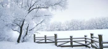Schneeketten für Segways