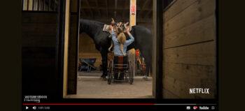 Netflix mit Rollstuhlfahrer: Gehen. Reiten. Rodeo.
