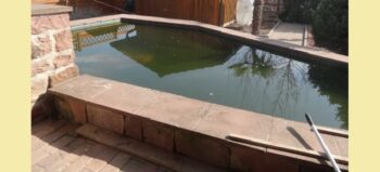 Keine kleinen Fische: der barrierearme Koi-Teich