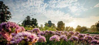 Ein Ausflug ins Grüne: Rollstuhlgerechte Parks und Gärten